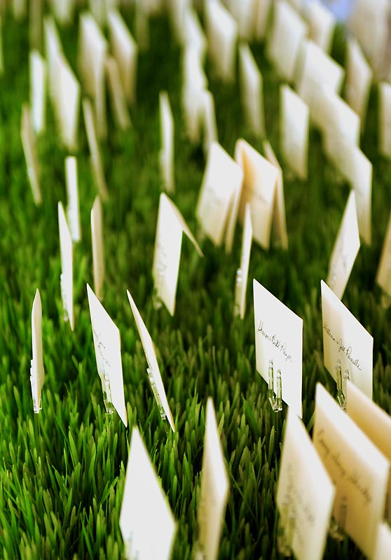 Place Cards in Grass